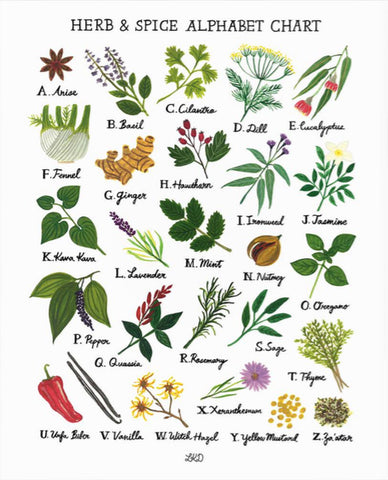 Lily Kao Design Alphabet print - Herbs & Spices