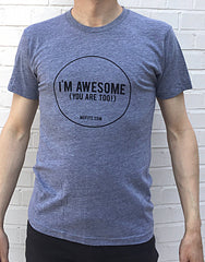 Mefits Men's T-Shirt, Grey 'I'm Awesome'.