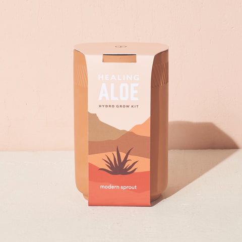 Modern Sprout Terracotta Kit - Aloe