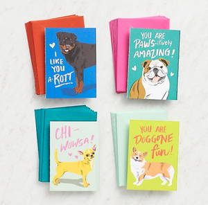 Paper Source - Doggone Fun Valentine Cards