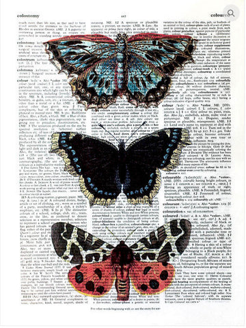 ArtnWordz Print - Stacked Butterflies