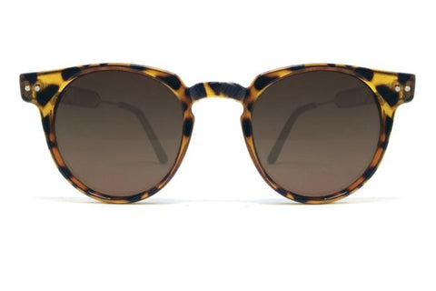 Spitfire Sunglasses - Teddy Boy Tortoise
