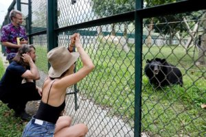 Maggie leaning on a fence looking at a bear