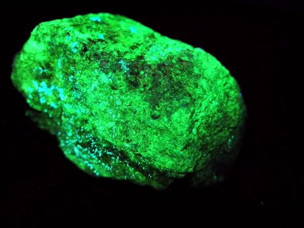 Fluorescent uranium ore, 292g/10.3oz, Copper King Mines, Grand County, – Uranium Rocks