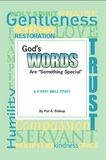 "Bible Study Book + Facilitator's Guide (on CD): ""God's Words Are Something Special"""