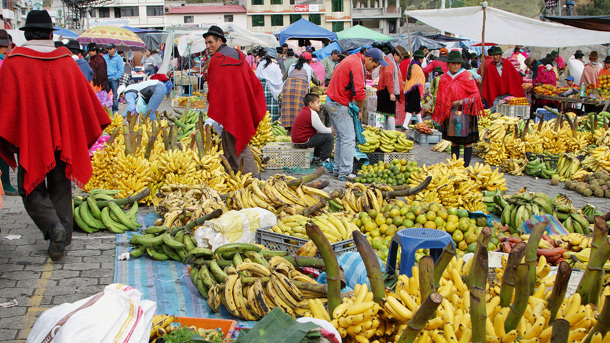 Busy plantain market in Ecuador. There are lots of fruits and plantains in the market and many of the people there are wearing ponchos and hats.