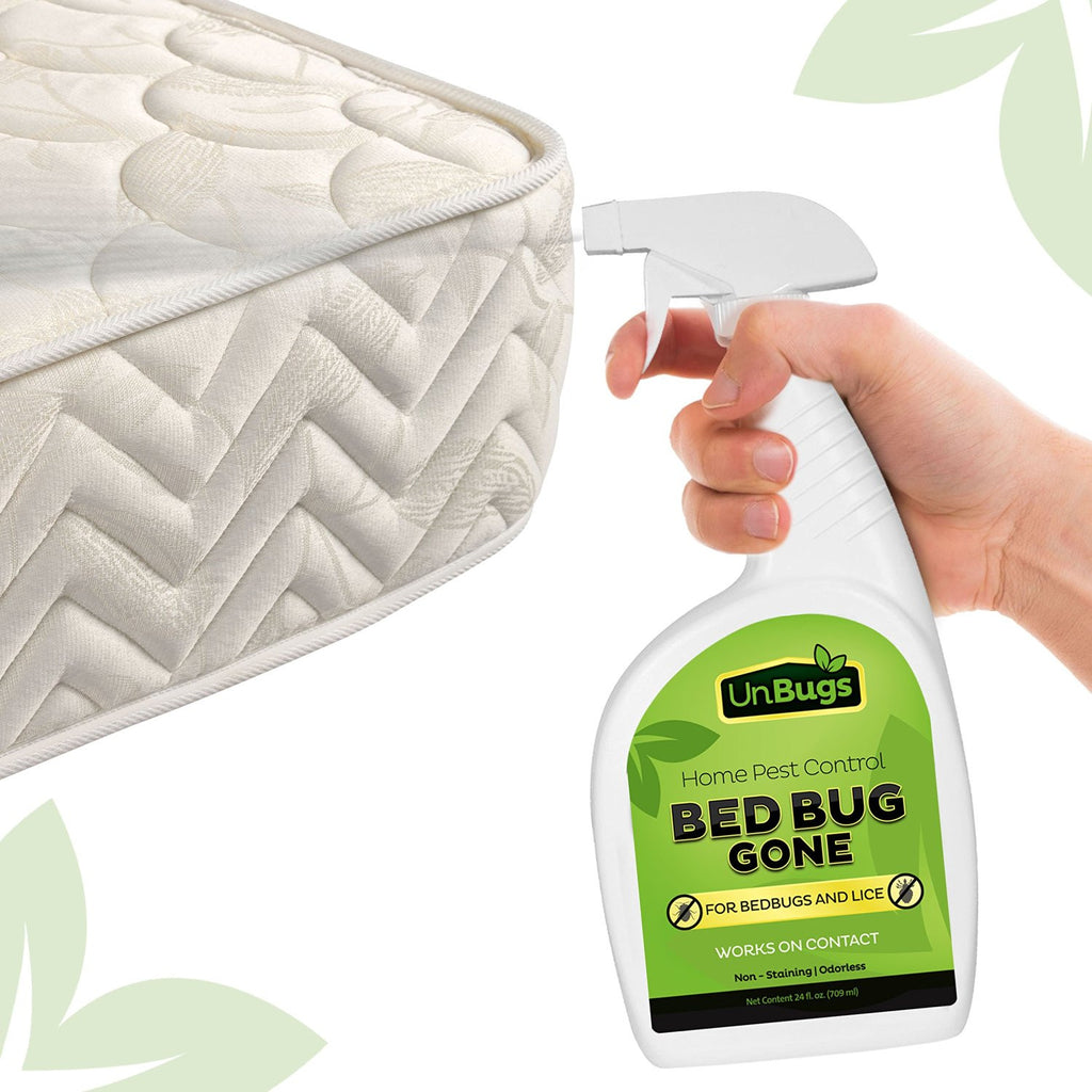 killer ecoraider bug spray p bed