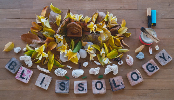 Blissology 100-hr Immersion, Session 2, Canggu, Bali May 22-31, 2019