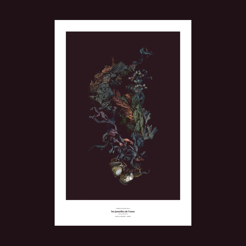 Sea Forest No.1 – Cove's Twins, Limited Edition *10* - Raoul & Simone