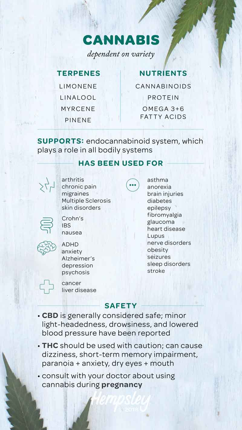 Infographic reference chart for cannabis