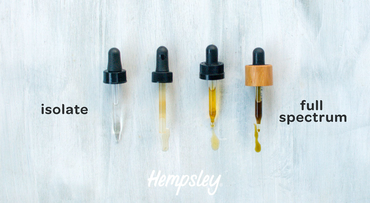 A line of CBD droppers to display the spectrum of color for isolate versus full spectrum CBD products