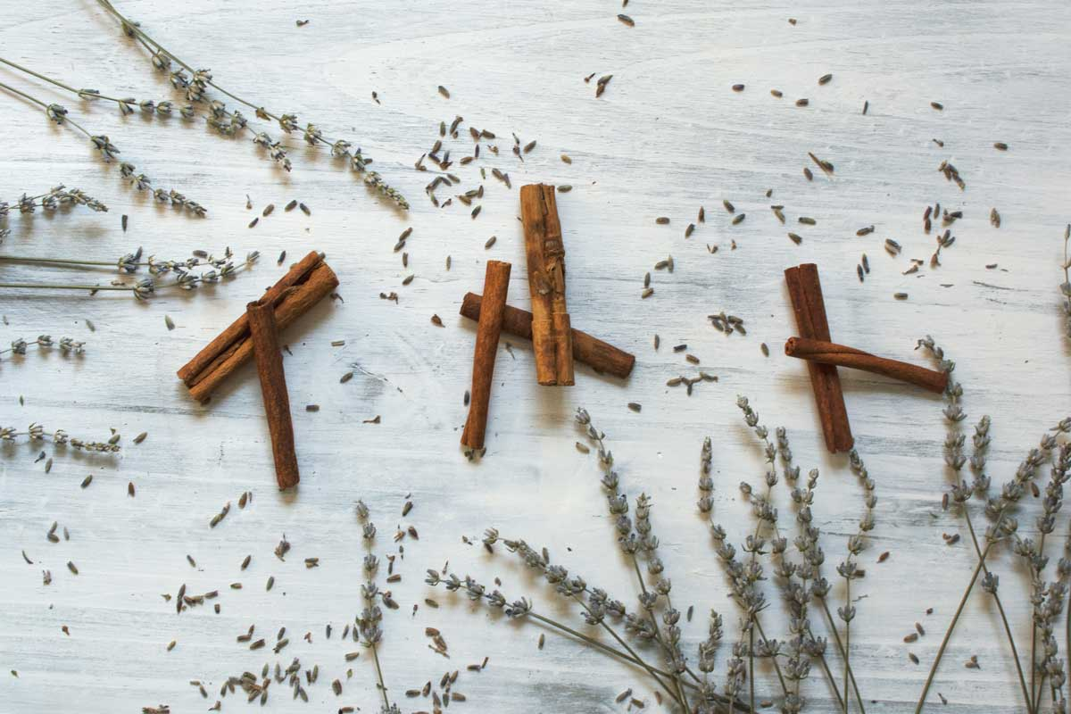 Herbs with the terpene linalool including lavender and cinnamon