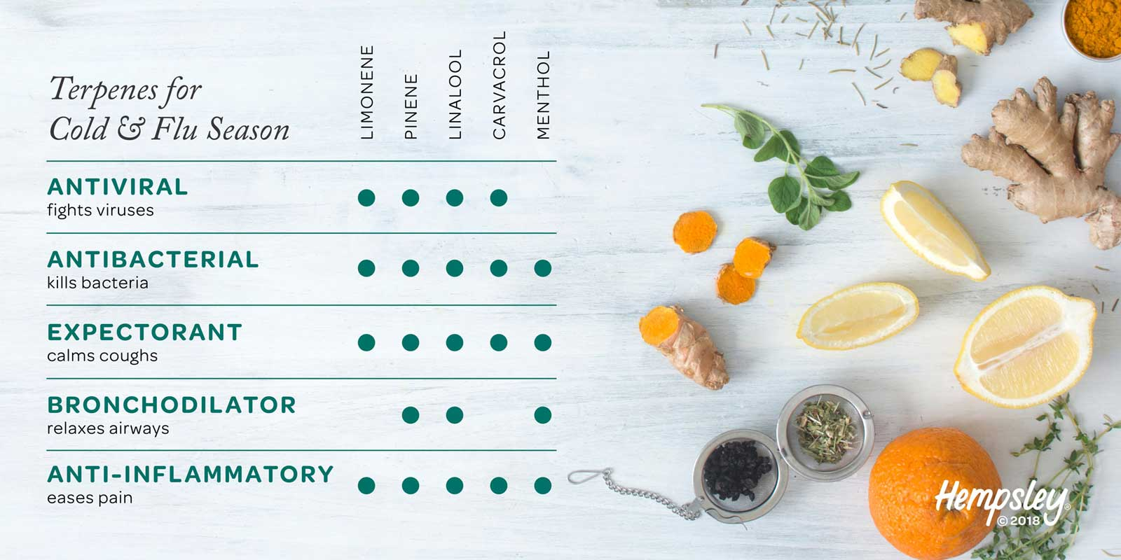 Infographic reference chart for antiviral terpenes for cold and flu season