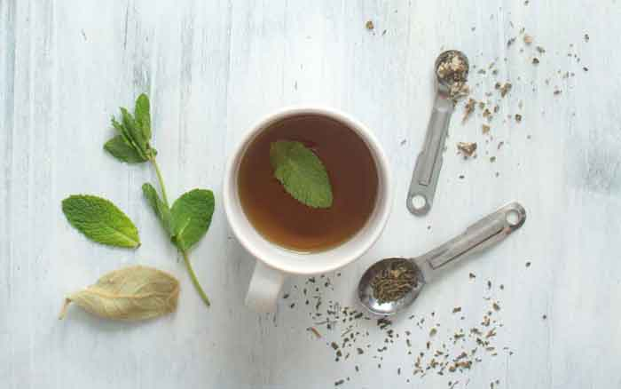 Mint and mullein tea