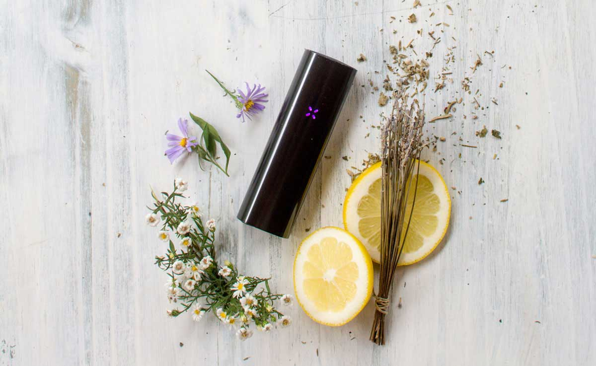 PAX Vaporizer with fresh flowers and herbs such as lavender and lemon