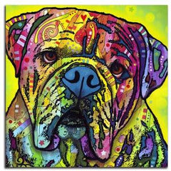 Colorful American Bulldog Pillow Cover