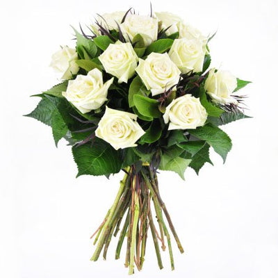 Dozen pure white roses bouquet