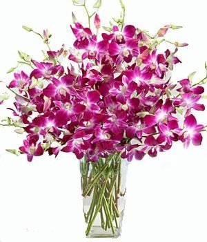 20 purple orchids bouquet. (Add VASE from the below options)