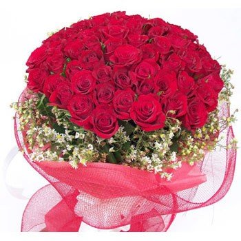 Bouquet of 4 dozen red roses with red net packing.