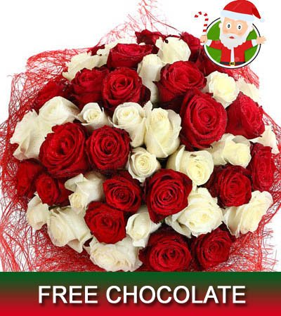 40 Stem Premium Red & White roses Christmas bouquet