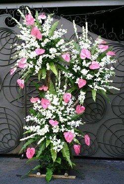 Premium flowers like Pink Anthurium and White Sonia Orchids