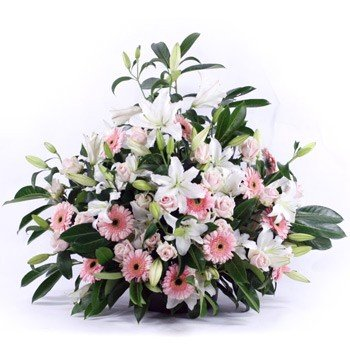 Arrangement of Lilies, Daisies, LS Roses