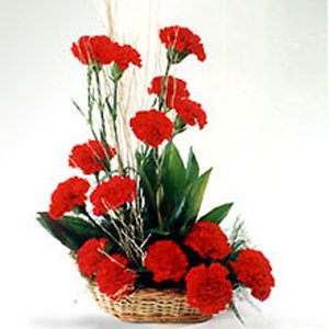 Basket  of 15 Red Carnations