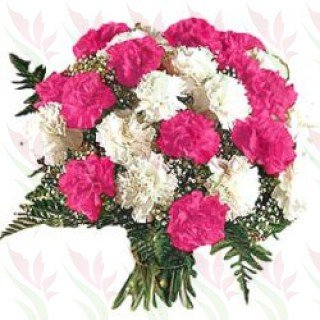 Bouquet of 24 Pink and White Carnation