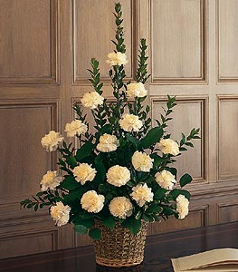 20 stem white carnations Basket arrangement.
