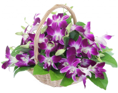 15 Stem Purple shade orchids nicely arranged in a wooden basket.