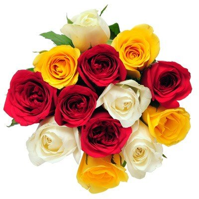 Bunch of 12 mixed color roses