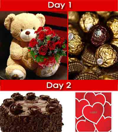 Day-1: Cuddly Teddy bear (aprx 2 Feet), 12 stem Red Roses bouquet wrapped nicely in cellophane and Ferrero Rocher Chocolate box (16 pcs)