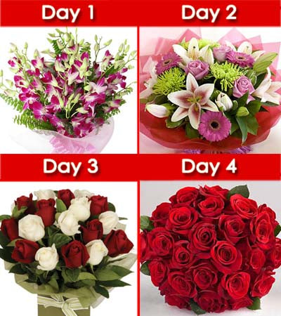Day-1: Bunch of 10 stem purple orchids wrapped beautifully in cellophane paper.