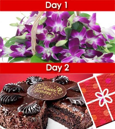 •	Day-1: Bunch of 10 stem purple delight orchids wrapped nicely with cellophane sheet.