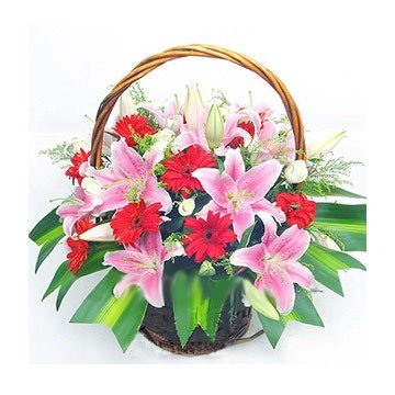 Premium Pink Lilies and Red Gerbera wooden basket arrangement (18+Flowers).