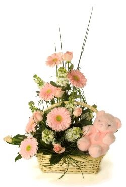 Basket Arrangement of Daisies and pretty carnations