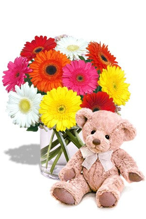 Dozen Mix-color Gerberas bunch