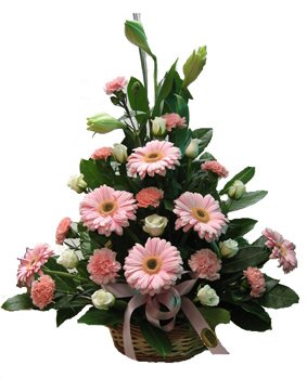 Basket of 24 Flowers (Incl Gerbera, Roses and Carnation)