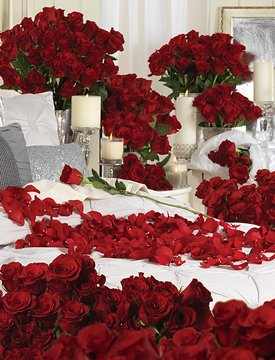 1000 Red Roses Different Arrangements. Contains: