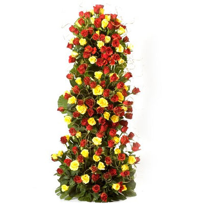 100 stalk of premium Red & Yellow LS Roses arranged with the help of stand with lush green fillers in it.