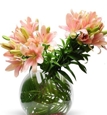 •	10 Stem Pink Lilies arranged in a Fish Bowl Glass Vase.