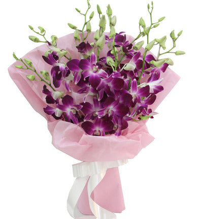 10 stem Purple shade Orchids