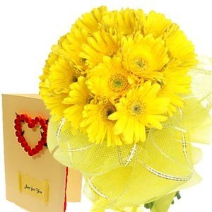 15 Yellow Gerbera packed in yellow packing with a Love Greeting Card (Card choice available)