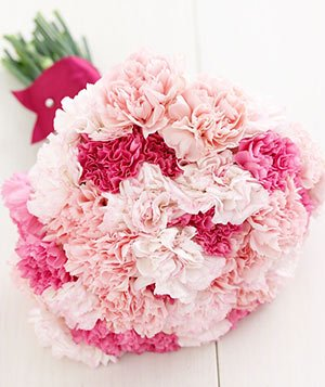 25 Mixed Carnations Bouquet