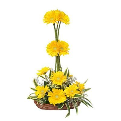 Designer basket of 15 Yellow Gerbera