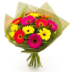 12 Colorful Gerbera Bouquet