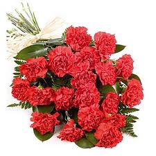 18 Red Carnations bouquet.