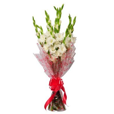 10 Stem Gladiolus Bouquet
