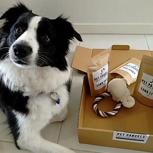 Monthly Dog Parcel