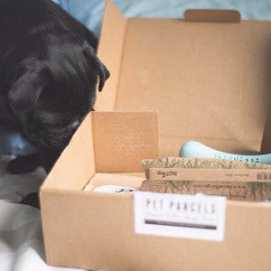 refthepug Pet Parcel Box